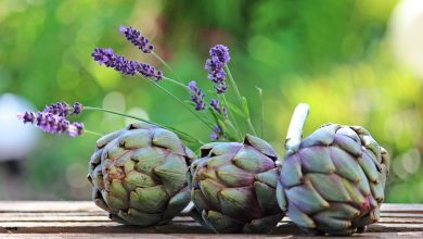 Photo of How to cook artichokes? The best techniques and recipes