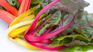 Photo of How to cook chard? Types of cooking and recipes